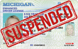michigan enhanced drivers license fee